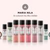 Découvrez Maria Nila, la nouvelle marque de capillaires professionnelle suédoise