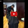 Ce chien se fait couper les cheveux comme un Homme