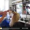 Cette coiffeuse a une technique de coupe complètement incroyable !