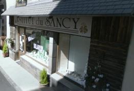Institut Du Sancy Mont-Dore