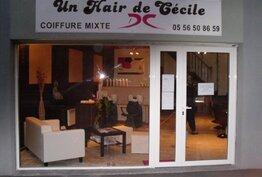 Un Hair de Cécile Parempuyre