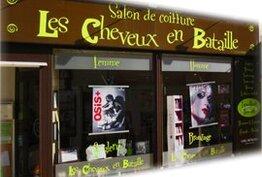 Les cheveux en bataille Ivry-la-Bataille