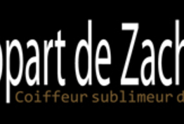 L'Appart de Zach Paris 02