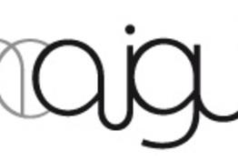 Salon Aiguille Annecy