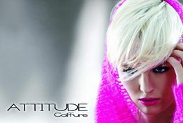 Attitude Coiffure Serris