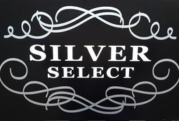 Silver select Vernaison