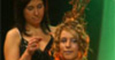 Salons professionnels de la coiffure 2010