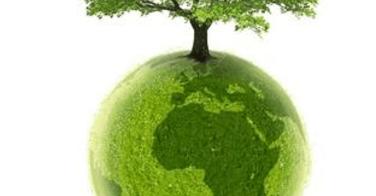Colorations Gaïa respectueuses de l'environnement