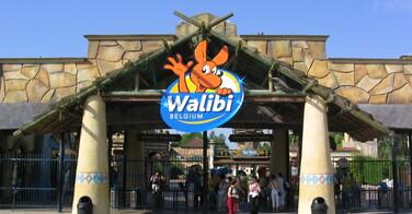Ce que ce parc d'attraction a fait aux roux est tout simplement révoltant !