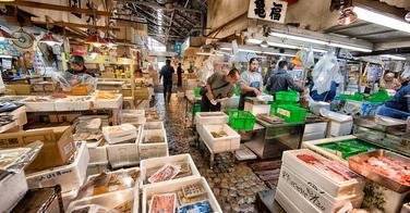 Le marché Tsukiji de Tokyo déménagera bientôt