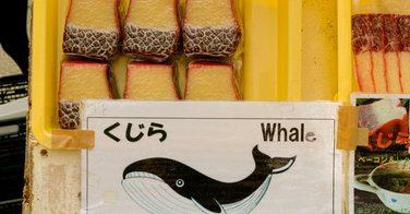 Arrêté, ce chef vendait illégalement des sushis de baleine...